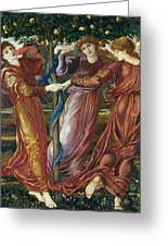 Garden Of The Hesperides Greeting Card by Sir Edward Burne Jones