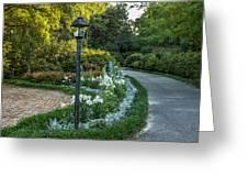 Garden Path #1 Greeting Card