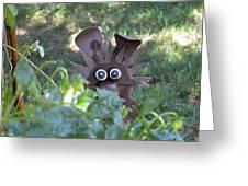Garden Peek-a-boo Greeting Card