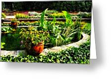 Garden Pond Greeting Card