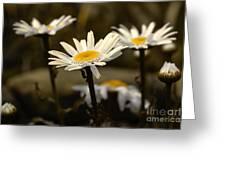 Garden Smiles Greeting Card