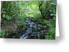 Garden Springs Creek In Spokane Greeting Card