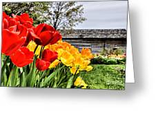 Garden Tulips On A Cloudy Day Greeting Card