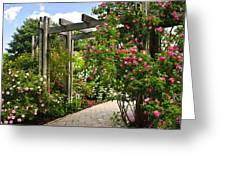 Garden With Roses Greeting Card