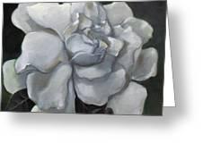 Gardenia Two Greeting Card