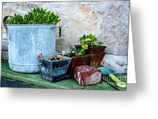 Gardening Pots And Small Shovel Against Stone Wall In Primosten, Croatia Greeting Card