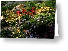 Gardens Of Laguna Greeting Card