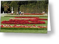Gardens Of The Schloss  Schonbrunn  Vienna Austria Greeting Card