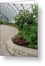 Garfield Park Conservatory Greeting Card