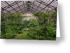 Garfield Park Conservatory Main Pond Greeting Card
