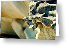 Gargoyle Coming Out Of The Rocks Gabriola Island. Greeting Card
