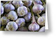 Garlic Bulbs Greeting Card by Jen White