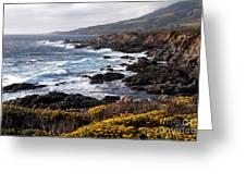 Garrapata Beach In Big Sur Greeting Card