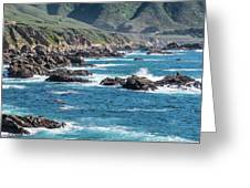 Garrapata State Park 2 Greeting Card