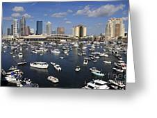 Gasparilla Armada Greeting Card
