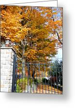 Gate And Driveway 1 Greeting Card