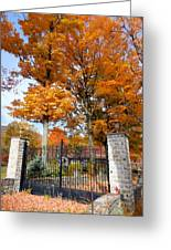 Gate And Driveway 3 Greeting Card