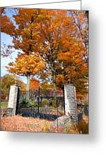 Gate And Driveway Greeting Card