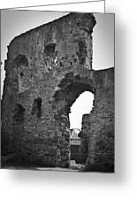 Gatehouse At Nenagh Castle Ireland Greeting Card