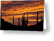 Gates Pass Sunset Greeting Card