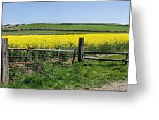Gateway To Golden Fields Greeting Card