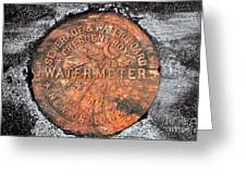 New Orleans Water Meter Cover 9 Months After Katrina Greeting Card