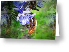Gathering Rosemary Pollen Greeting Card