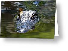 Gator And Dragonfly Greeting Card