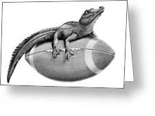 Gator Football Greeting Card