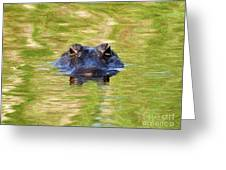 Gator In The Green - Digital Art Greeting Card