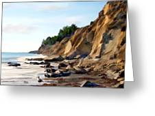 Gaviota Greeting Card