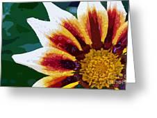 Gazania Flower Design Greeting Card