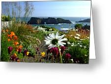 Gazing Toward The Sea Greeting Card