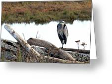 Gbh On Log Greeting Card