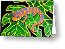 Gecko Hanging On Greeting Card