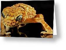 Gecko - Id 16218-130646-3343 Greeting Card