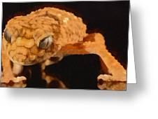 Gecko - Id 16218-130703-9950 Greeting Card