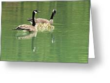 Geese And Babies Greeting Card