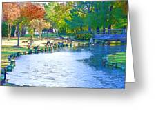 Geese In Pond 2 Greeting Card