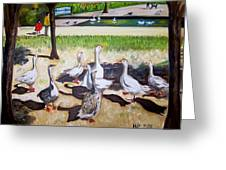 Geese In The Park Greeting Card