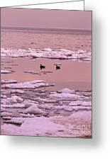 Geese On Lake Huron At Sunset Greeting Card