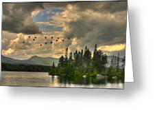 Geese Over Jericho Lake Greeting Card