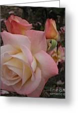 Gemini Rose Greeting Card