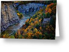 Genesee River Gorge II Greeting Card