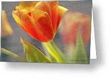 Gentility Greeting Card
