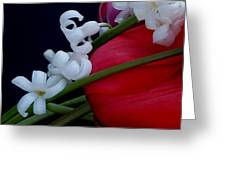 Gentle Breeze Greeting Card