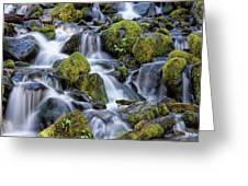 Gentle Cascade Greeting Card