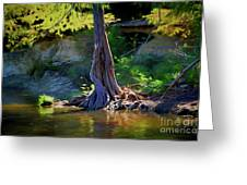 Gentle Giant 122317-1 Greeting Card