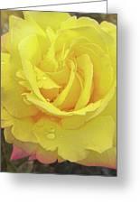 Suave Amarillo Greeting Card