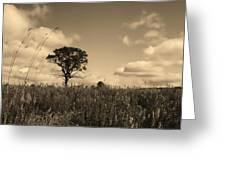Gentle Landscape Greeting Card